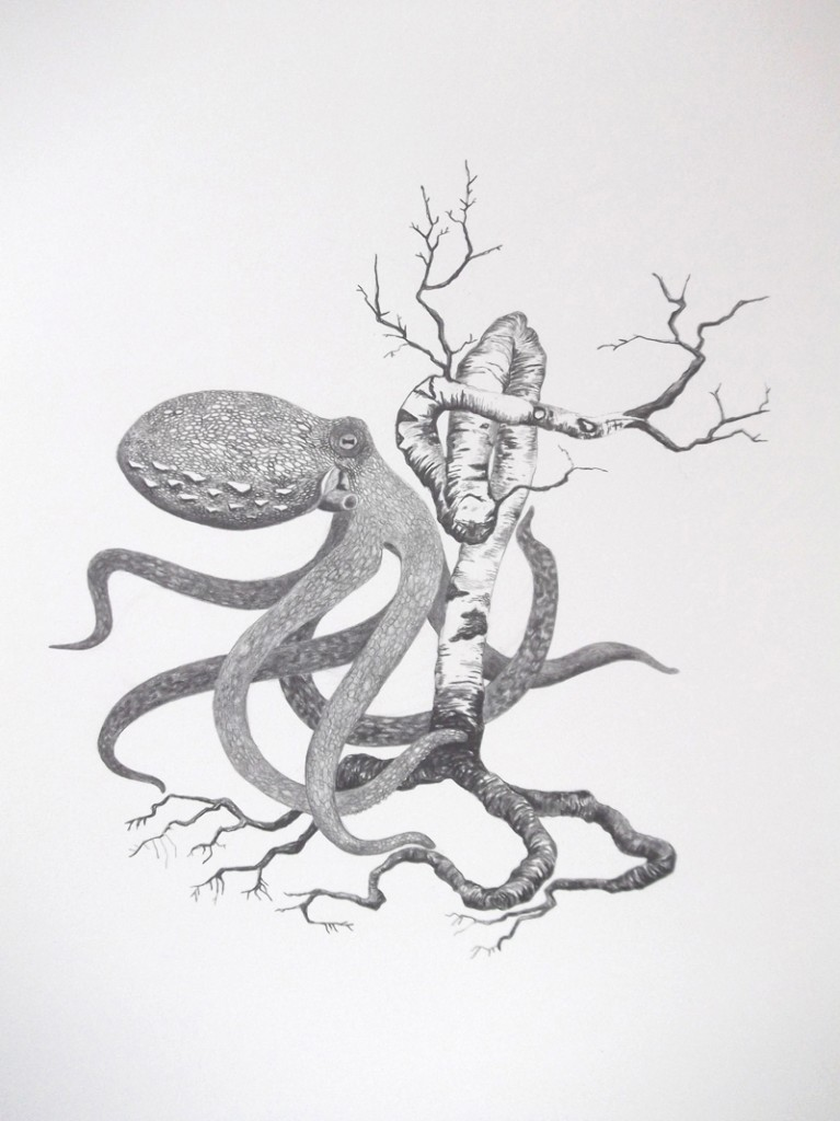 Thorjussen_Octopus and tree nr.2